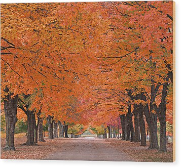 1110-7483 Maplewood Cemetery At Harrision Arkansas Wood Print by Randy Forrester