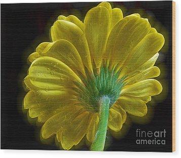 Wood Print featuring the photograph Yellow Gerber by Elvira Ladocki