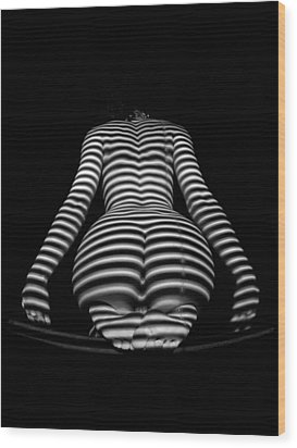 1249 Zebra Woman Stripe Series  1249 Wood Print by Chris Maher