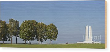 130918p135 Wood Print by Arterra Picture Library