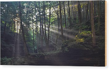 Old Man's Cave Wood Print by Brian Stevens