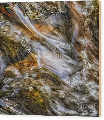 Fine Art Nature Photography By Joanne Bartone Wood Print