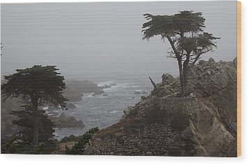 17 Mile Drive Cypress Tree Wood Print by Linda Aiassa