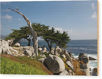 Wood Print featuring the photograph 17 Mile Drive  by Vinnie Oakes