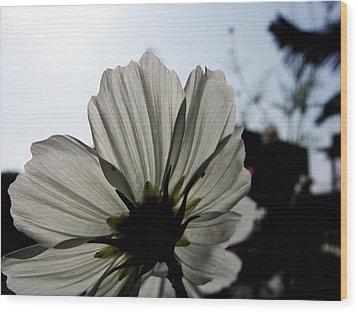 Loveflowers Wood Print by Baljit Chadha