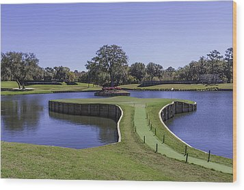 17th Hole Or Island Green At Tpc Sawgrass Wood Print by Karen Stephenson