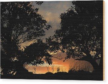 Sunset Wood Print by Barbara Walsh