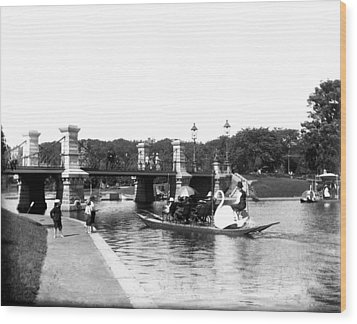 1900 Boston Swan Boats Wood Print