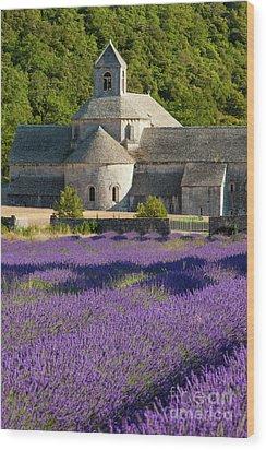 Abbaye De Senanque Wood Print by Brian Jannsen