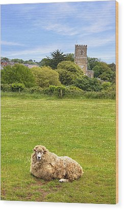 Abbotsbury Wood Print by Joana Kruse