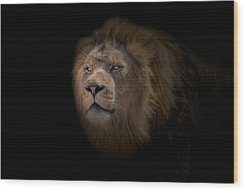 Wood Print featuring the photograph African Lion by Peter Lakomy
