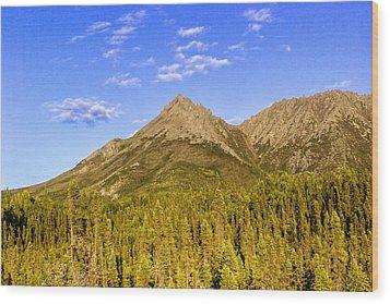 Alaska Mountains Wood Print by Chad Dutson