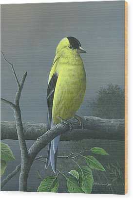 Wood Print featuring the painting American Goldfinch by Mike Brown