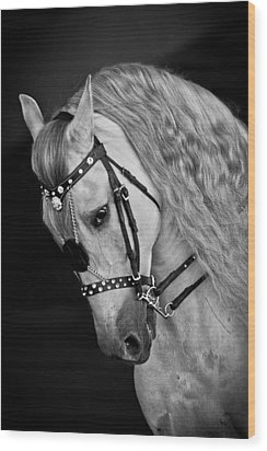 Wood Print featuring the photograph Andalusian D9098 by Wes and Dotty Weber