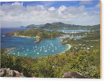 Antigua Wood Print by Brian Jannsen
