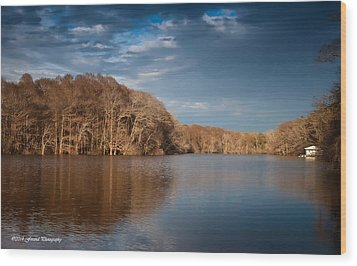 Apalachicola River  Wood Print by Debra Forand