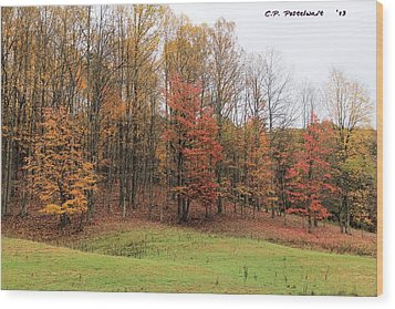 Autumn Color Wood Print by Carolyn Postelwait