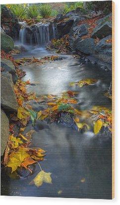 Autumn Creek Wood Print by Matt Dobson