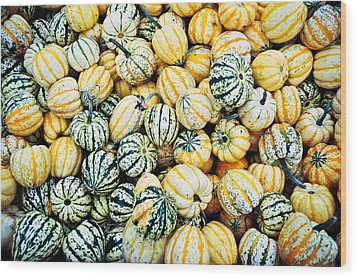 Autumn Gourds Wood Print by Crystal Hoeveler