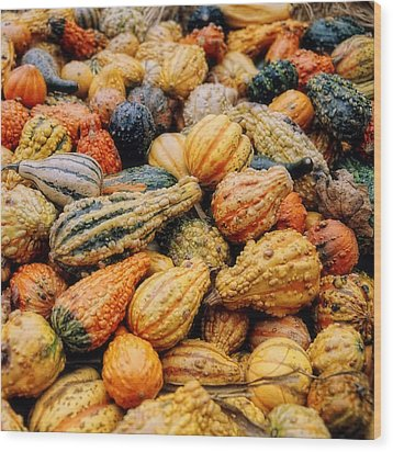 Autumn Gourds Wood Print by Joann Vitali