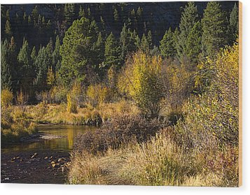 Autumn In The Rockies Wood Print by Anne Rodkin