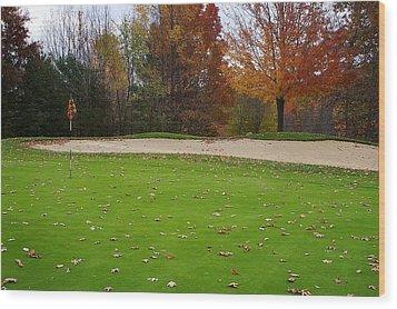 Autumn On The Green Wood Print by Randy Pollard