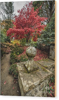 Autumn Path Wood Print by Adrian Evans
