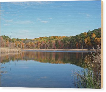 Wood Print featuring the photograph Autumn Pond by Aimee L Maher Photography and Art Visit ALMGallerydotcom