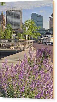 Wood Print featuring the photograph Baltimore Spring Flowers by Marianne Campolongo