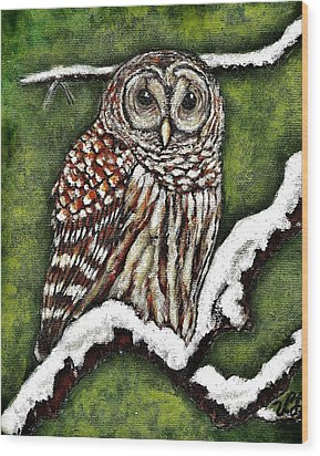 Wood Print featuring the painting Barred Owl by VLee Watson