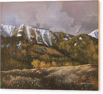 Bear Claw Wood Print