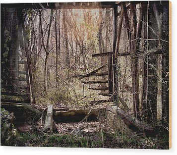 Wood Print featuring the photograph Been There by Bonnie Willis