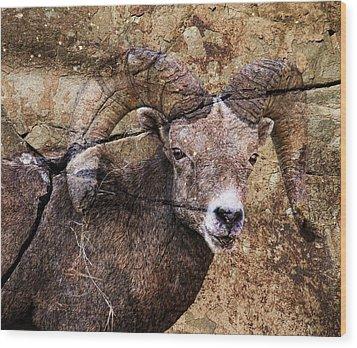 Bighorn Rock Wood Print by Steve McKinzie