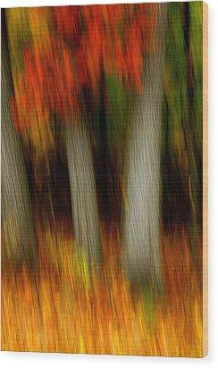 Blazing In The Woods Wood Print by Randy Pollard