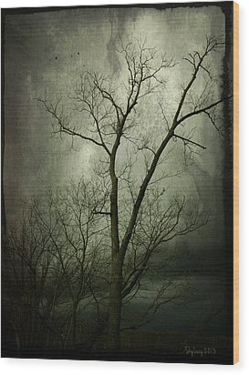 Wood Print featuring the photograph Bleak by Cynthia Lassiter