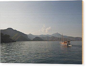 Boat Trip Wood Print by David Isaacson