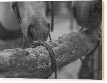 Braided Rope Wood Print by Amber Kresge