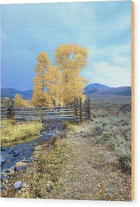 Buffalo Ranch Wood Print