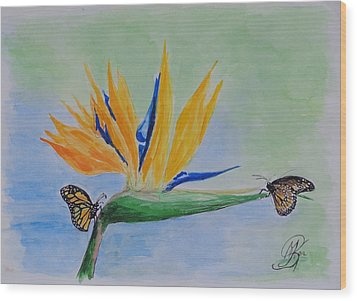 2 Butterflies On A Bird Of Paradise Wood Print by Kerstin Berthold