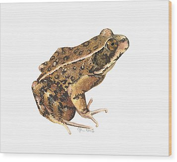 California Red-legged Frog Wood Print by Cindy Hitchcock