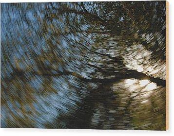 Camera Toss Wood Print