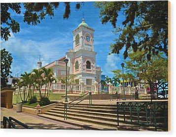 Catedral Santiago Apostol Wood Print by Ricardo J Ruiz de Porras
