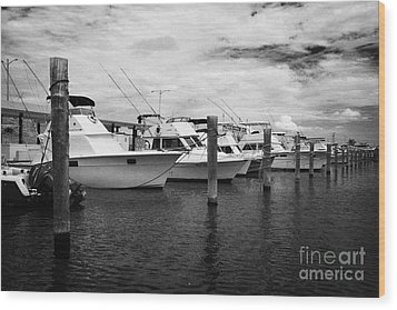 Charter Fishing Boats Charter Boat Row City Marina Key West Florida Usa Wood Print by Joe Fox