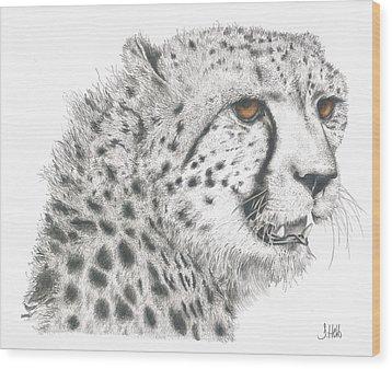 Cheetah Glory Wood Print by John Hebb