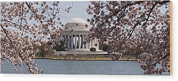 Cherry Blossom Trees In The Tidal Basin Wood Print