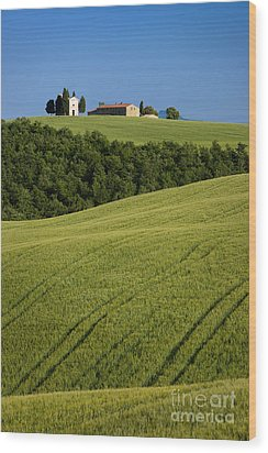 Church In The Field Wood Print by Brian Jannsen
