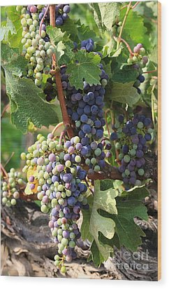 Colorful Grapes Wood Print by Carol Groenen