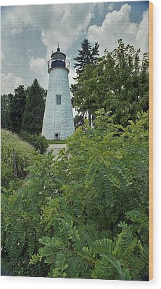 Concord Point Lighthouse Wood Print by Skip Willits