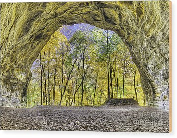 Council Overhang At Starved Rock Wood Print by Twenty Two North Photography