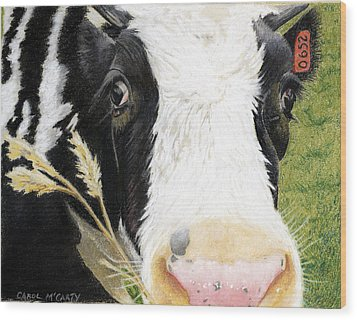 Cow No. 0652 Wood Print by Carol McCarty